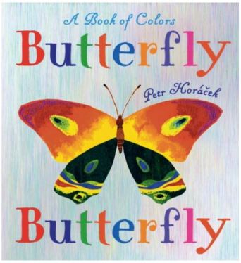 Butterfly Butterfly - A Book of Colors by Petr Horacek