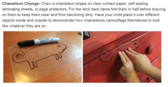 Chameleon idea
