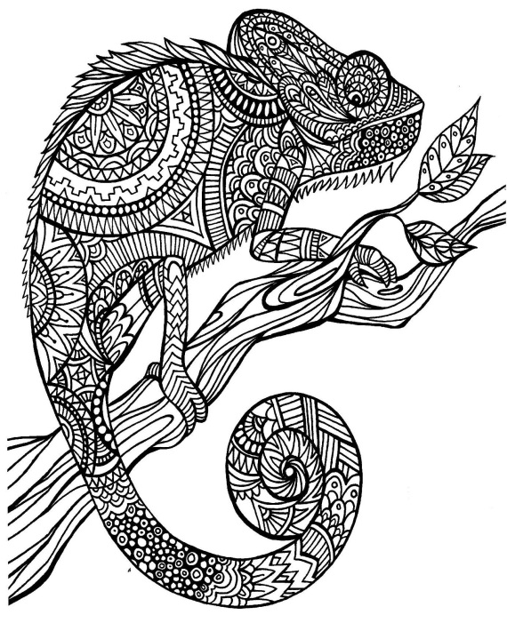 ... His Own u0026 The Mixed Up Chameleon: Lesson Plan Ideas u0026 Free Printables